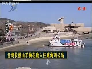 直播实况:迎接台湾梅花鹿和长鬃山羊入住威海(三)