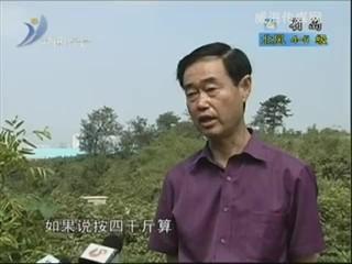 乡风海韵2012-9-3