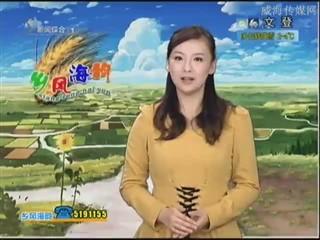 乡风海韵 2012-12-3