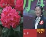 团市委青年创业大赛晚会 2013-1-23(20:02:55-21:45:13)
