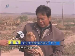 乡风海韵 2013-2-12