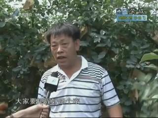 乡风海韵 2013-7-26