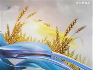 乡风海韵 2013-9-24