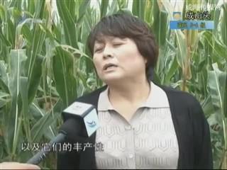 乡风海韵 2013-9-18
