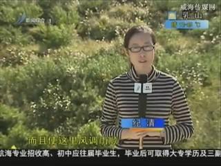 乡风海韵 2013-9-26