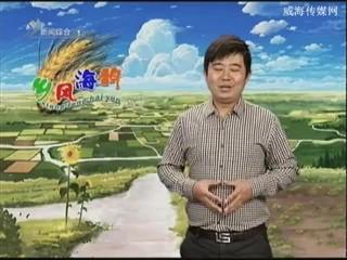 乡风海韵 2013-11-30