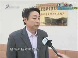 乡风海韵 2013-11-4