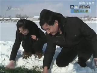 乡风海韵 2013-12-20