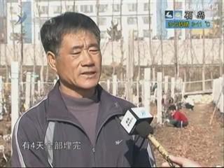 乡风海韵 2013-12-3