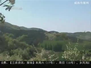 乡风海韵 2014-5-16