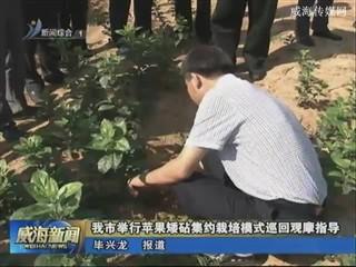 威海市举行苹果矮砧集约栽培模式巡回观摩指导