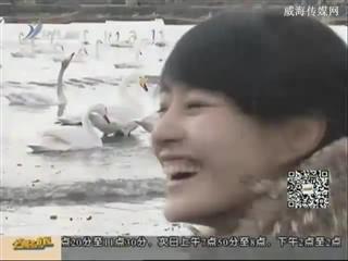幸福之旅 2014-11-15(18:13:14-18:27:14)