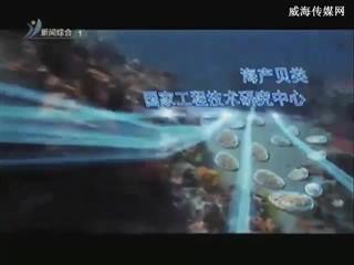 东部滨海新城宣传片